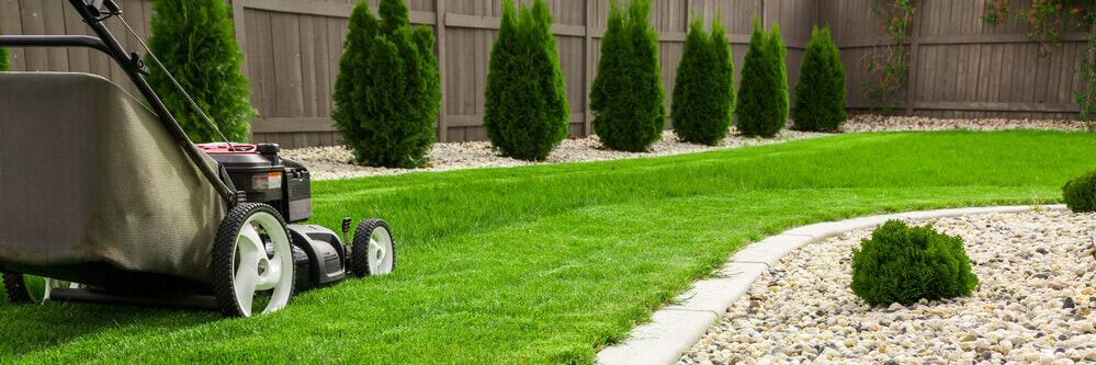 low angle image of a lawn mower sitting on very healthy green grass that has been half cut
